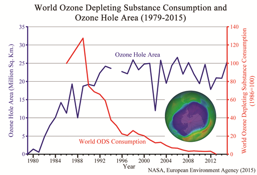 Did We Really Save the OzoneLayer?