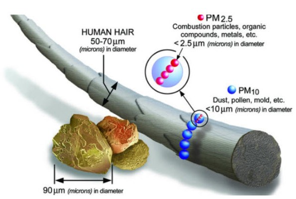 Claim: Air pollution linked to blood vessel damage in healthy youngadults